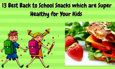13 Best Back to School Healthy Snacks for Kids