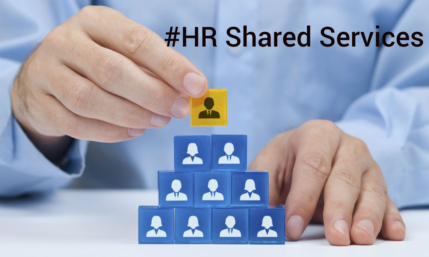 Preferences and Issues of HRshared services