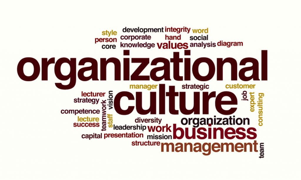 Innovative Culture in the Organization