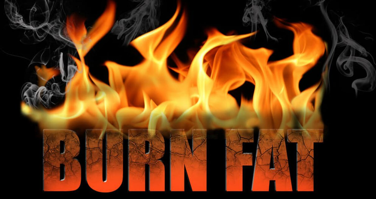 The Science of Burn Fat 101