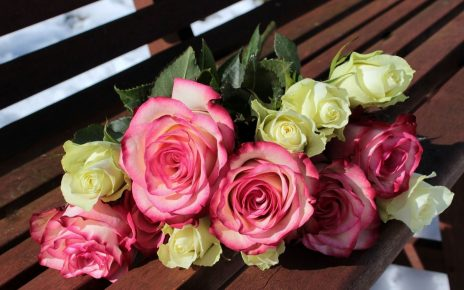 5 Romantic Flowers That You Can Give as a Gift