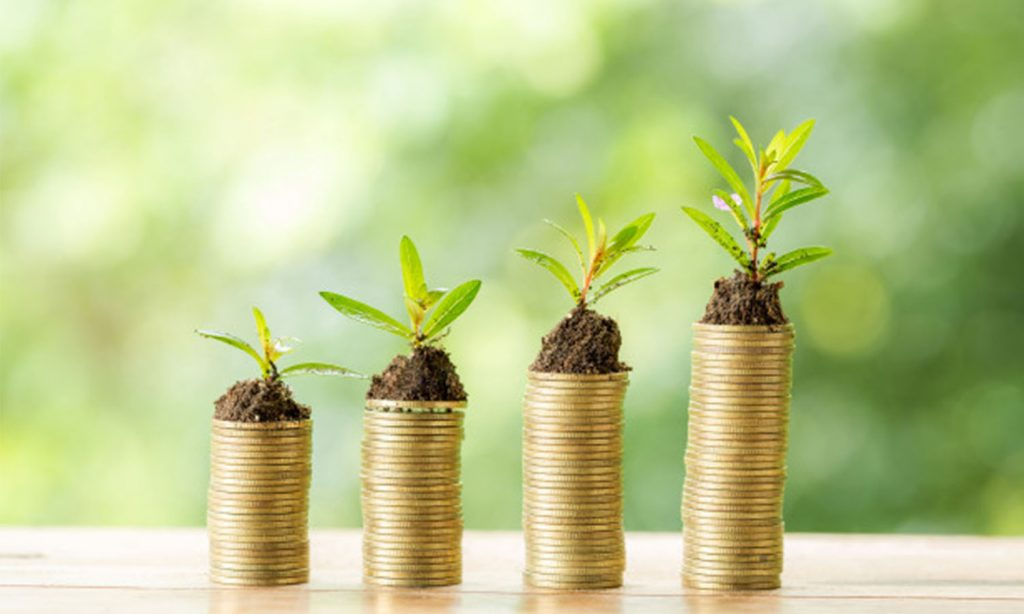 6 Investment Options Available Today To Grow Your Wealth