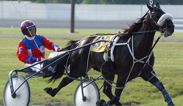 Horse Racing: The Sport of Kings