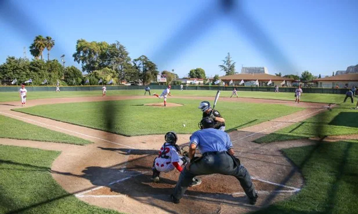 How To Run A Youth Baseball All Star Team
