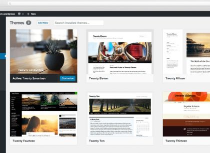 Design your own Custom WordPress Themes