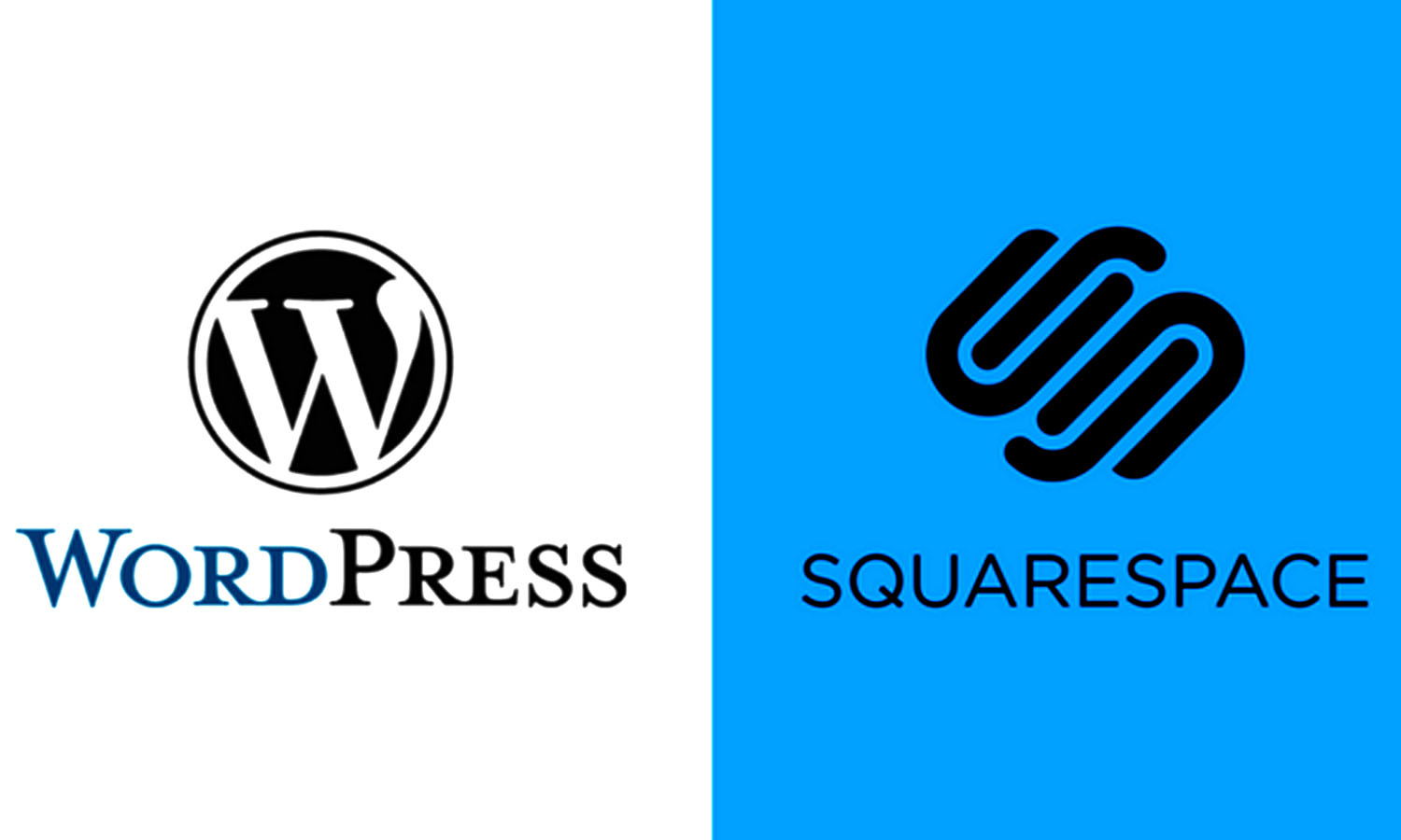 Which Platform Is Better for Your Business - WordPress or SquareSpace?